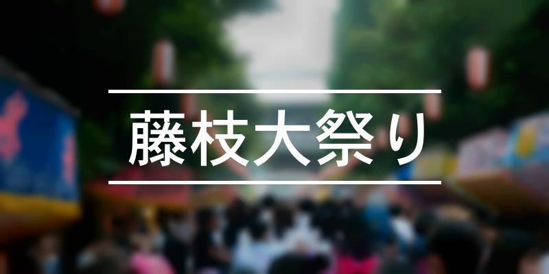 藤枝大祭り 2020年 [祭の日]