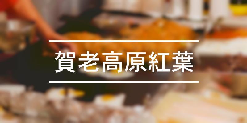 賀老高原紅葉 2020年 [祭の日]