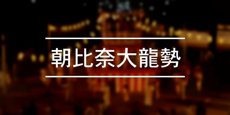 朝比奈大龍勢 2020年 [祭の日]