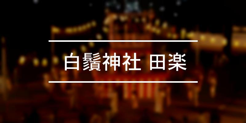 白鬚神社 田楽 2020年 [祭の日]