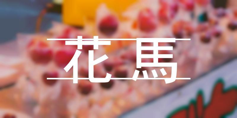 花馬 2021年 [祭の日]