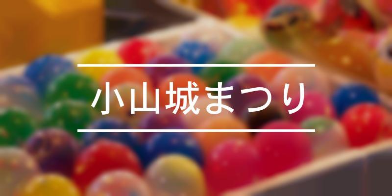 小山城まつり 2020年 [祭の日]