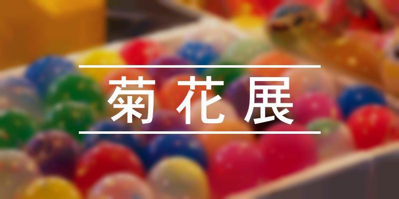 菊花展 2020年 [祭の日]