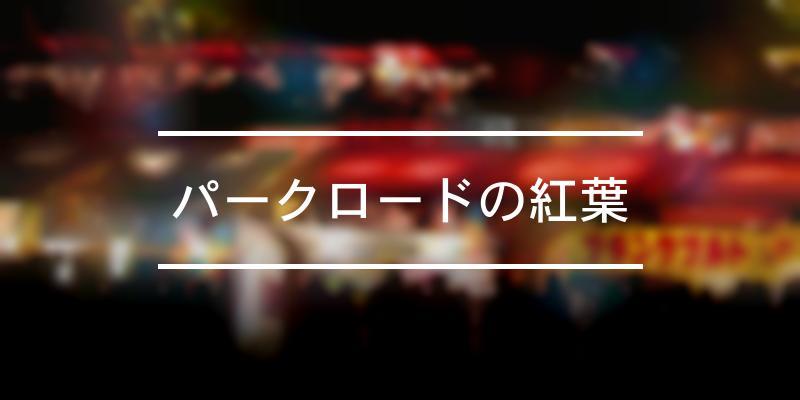 パークロードの紅葉 2021年 [祭の日]