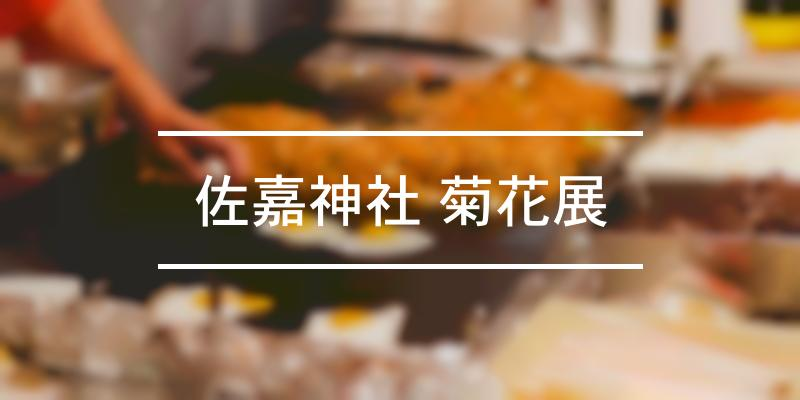 佐嘉神社 菊花展 2021年 [祭の日]