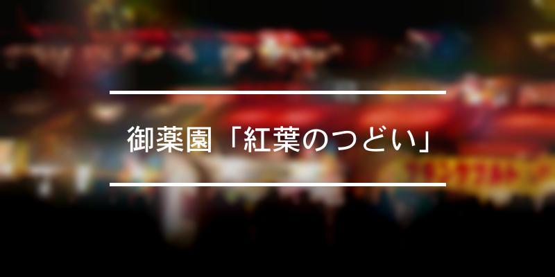 御薬園「紅葉のつどい」 2020年 [祭の日]