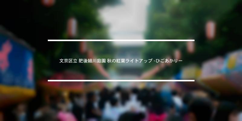 文京区立 肥後細川庭園 秋の紅葉ライトアップ -ひごあかりー 2020年 [祭の日]