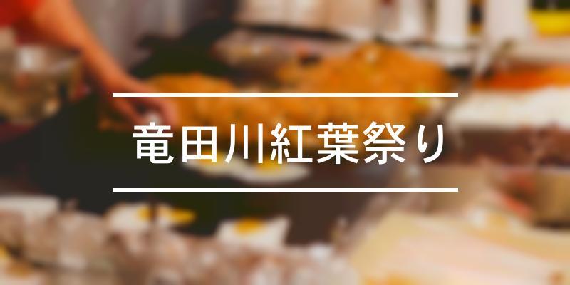 竜田川紅葉祭り 2021年 [祭の日]