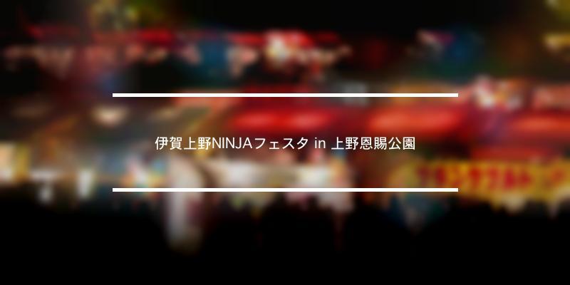 伊賀上野NINJAフェスタ in 上野恩賜公園 2020年 [祭の日]