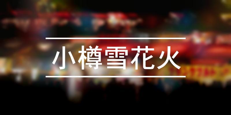 小樽雪花火 2020年 [祭の日]