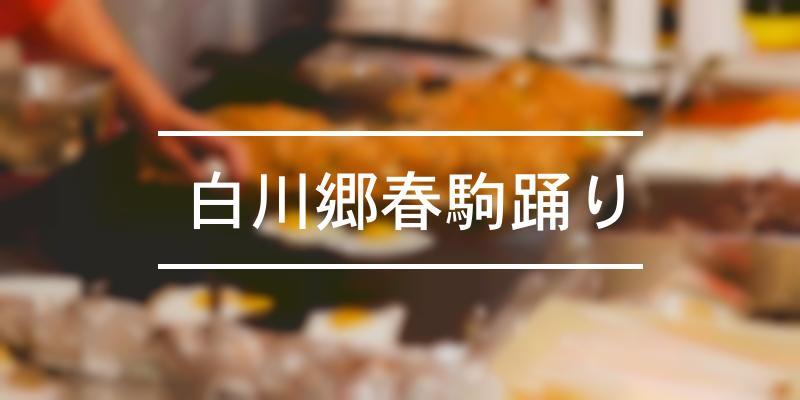 白川郷春駒踊り 2021年 [祭の日]