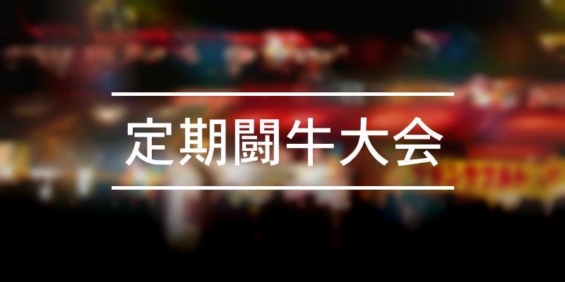 定期闘牛大会 2021年 [祭の日]