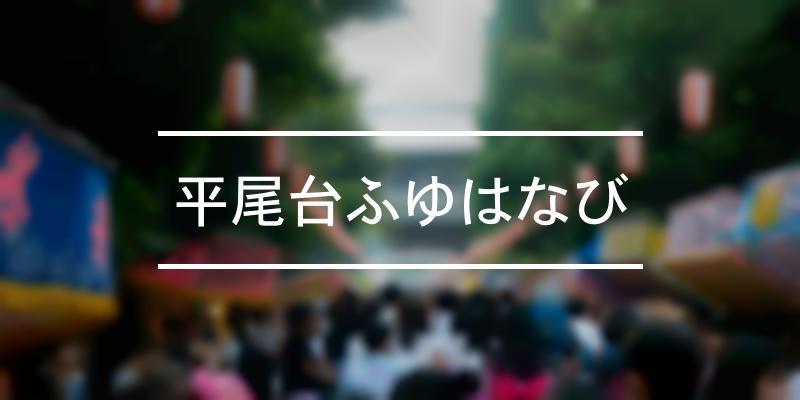 平尾台ふゆはなび 2021年 [祭の日]