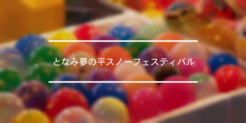 となみ夢の平スノーフェスティバル 2021年 [祭の日]
