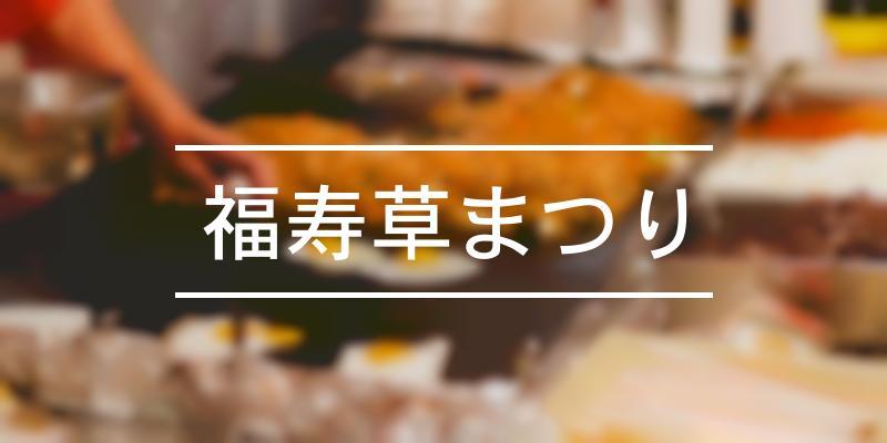 福寿草まつり 2021年 [祭の日]