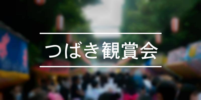 つばき観賞会 2021年 [祭の日]