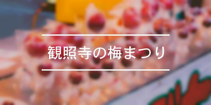 観照寺の梅まつり 2021年 [祭の日]