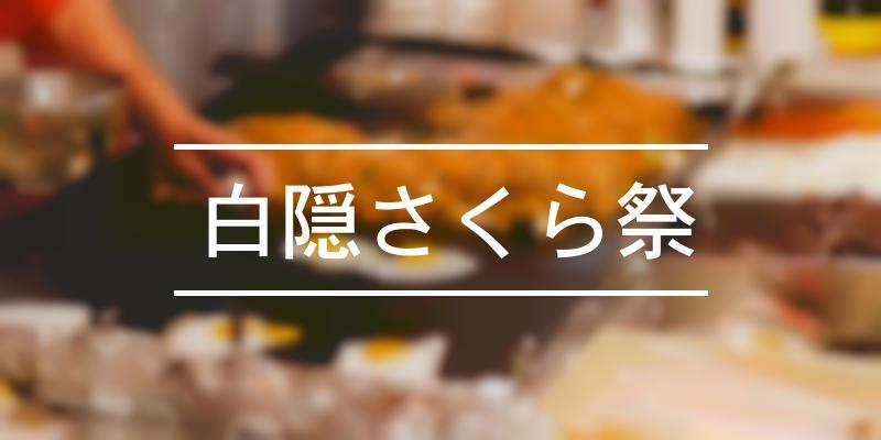 白隠さくら祭 2021年 [祭の日]