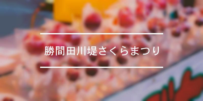 勝間田川堤さくらまつり 2021年 [祭の日]