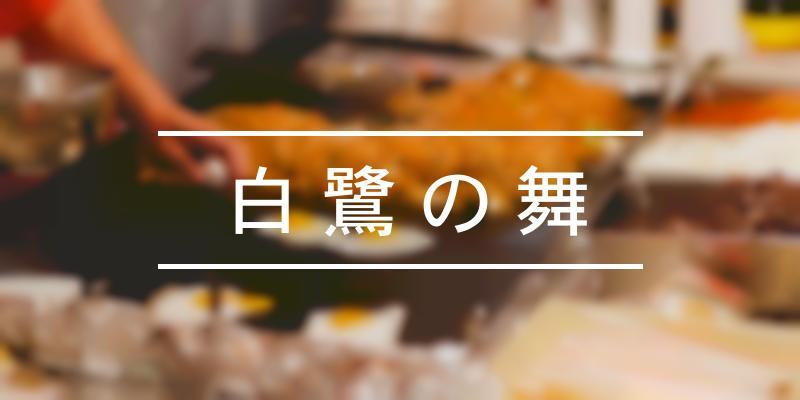 白鷺の舞 2021年 [祭の日]