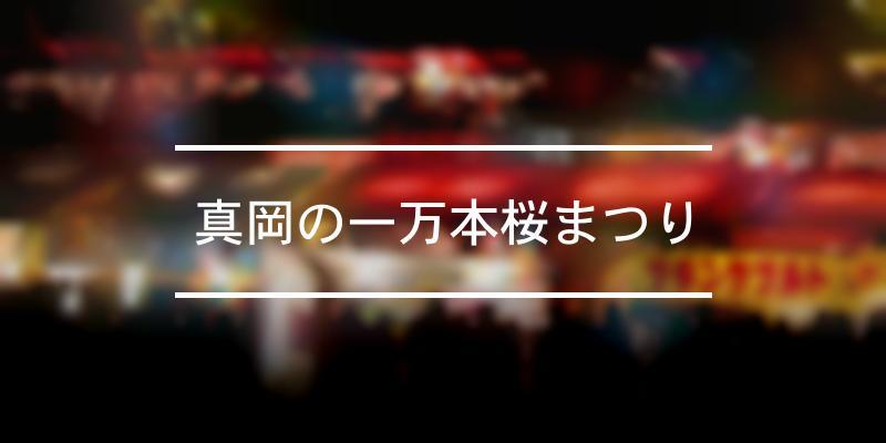 真岡の一万本桜まつり 2021年 [祭の日]