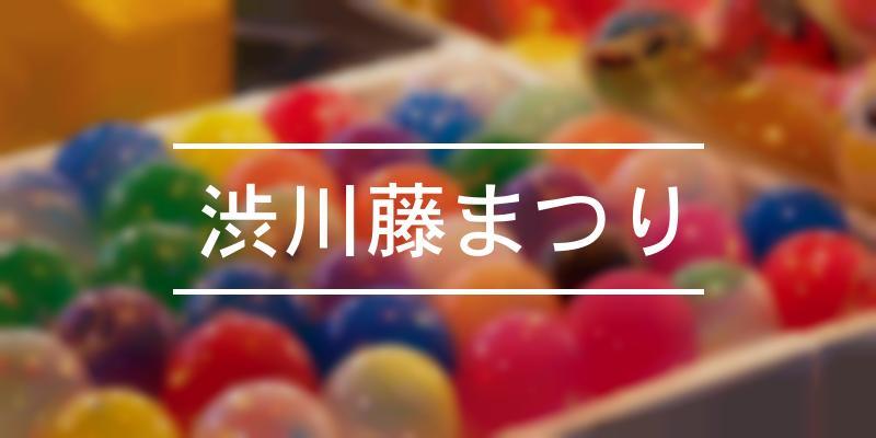 渋川藤まつり 2021年 [祭の日]
