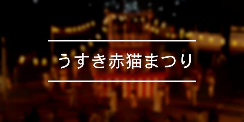 うすき赤猫まつり 2021年 [祭の日]