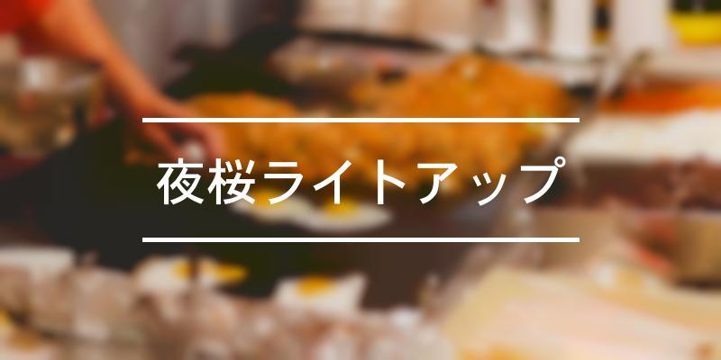 夜桜ライトアップ 2021年 [祭の日]