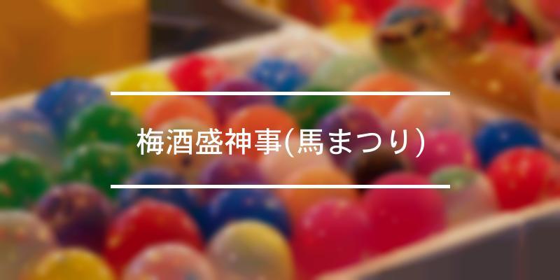梅酒盛神事(馬まつり) 2021年 [祭の日]