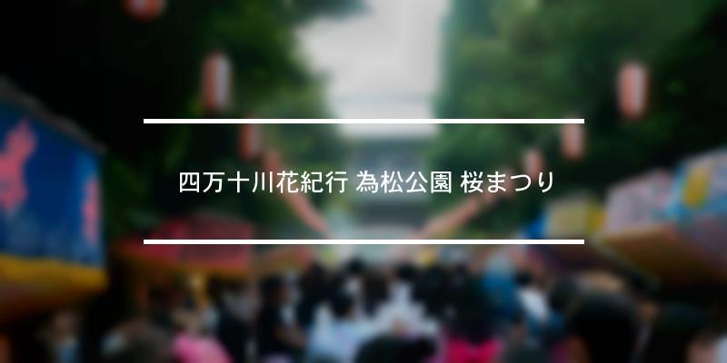 四万十川花紀行 為松公園 桜まつり 2021年 [祭の日]
