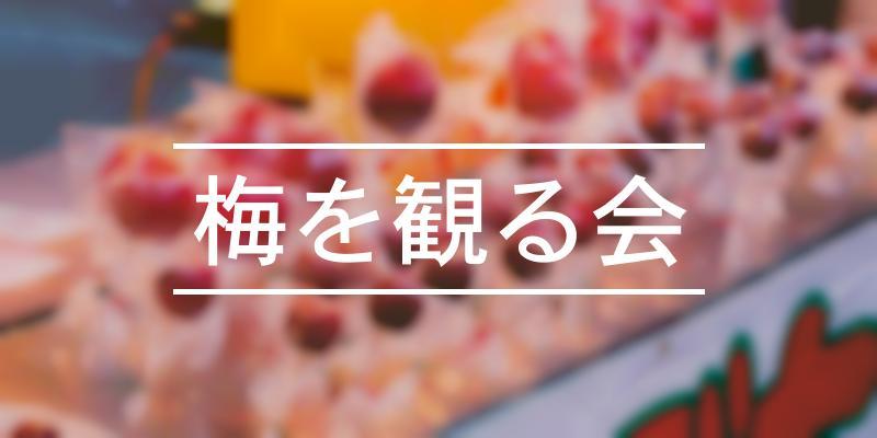 梅を観る会 2021年 [祭の日]