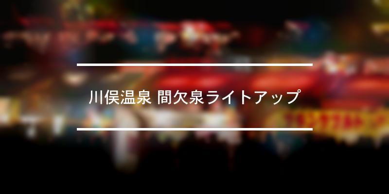 川俣温泉 間欠泉ライトアップ 2021年 [祭の日]