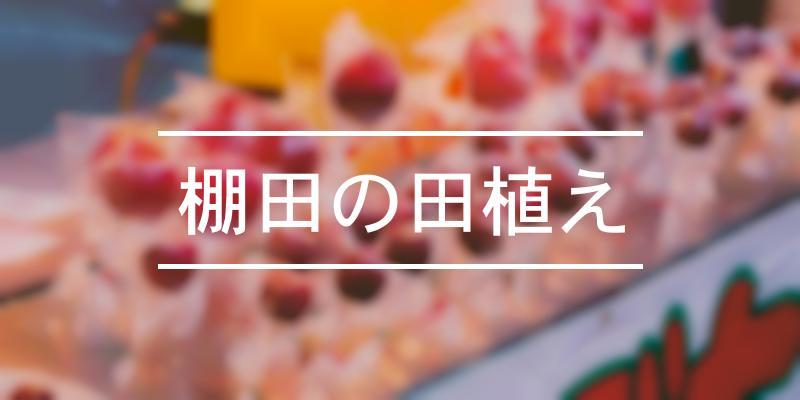 棚田の田植え 2021年 [祭の日]