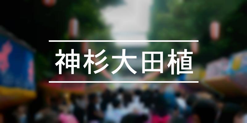 神杉大田植 2021年 [祭の日]