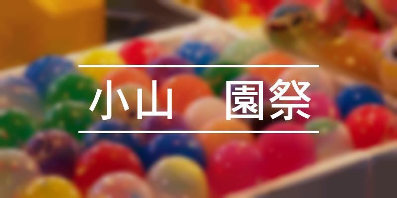 小山衹園祭 2021年 [祭の日]