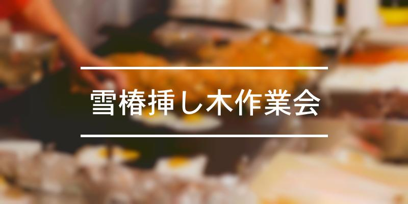 雪椿挿し木作業会 2021年 [祭の日]